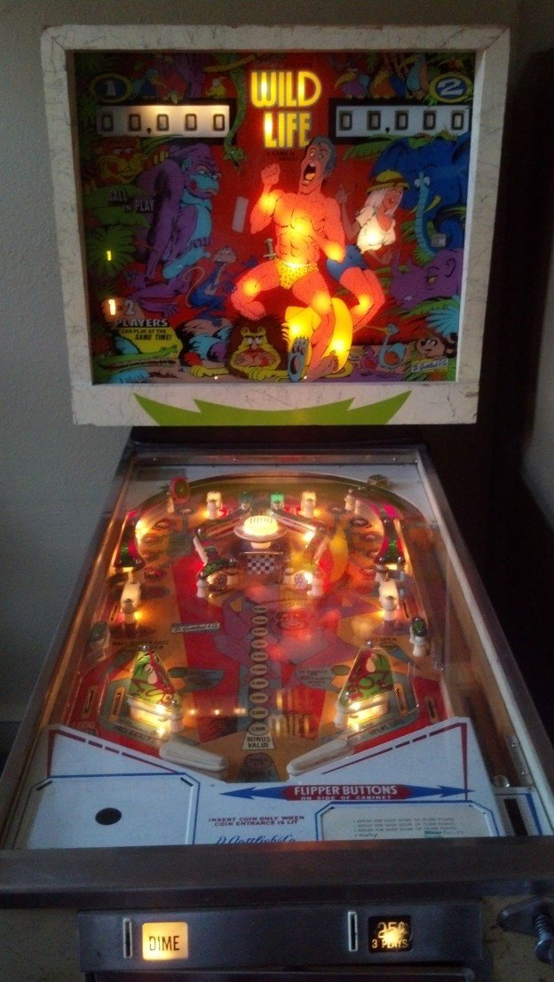 Backglass and playfield of Wild Life pinball machine for sale.